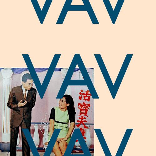 VAV Picture